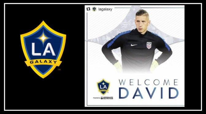 Player Profile: LA Galaxy's Keeper David Bingham