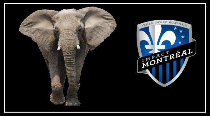 The Elephant is Out of the Room and Running Wild for the Montréal Impact